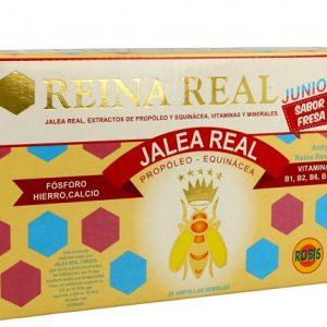 JALEA REAL JUNIOR ROBIS Envase 20 viales